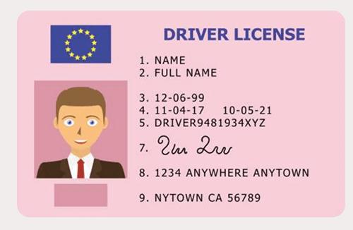 Verify with Driving Licence - Cashmo